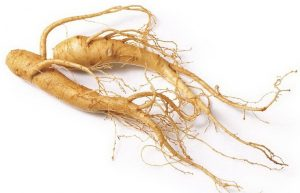 panax-ginseng-testosterone-nitric-oxide-and-erection-benefits
